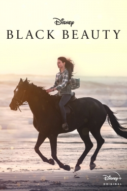 hd-Black Beauty