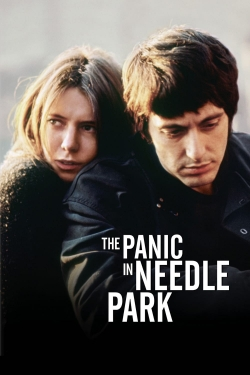 hd-The Panic in Needle Park
