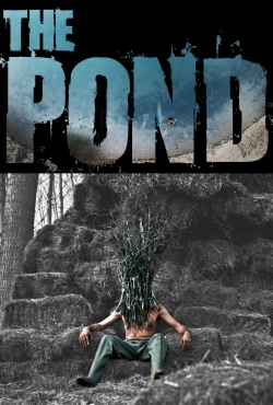 hd-The Pond